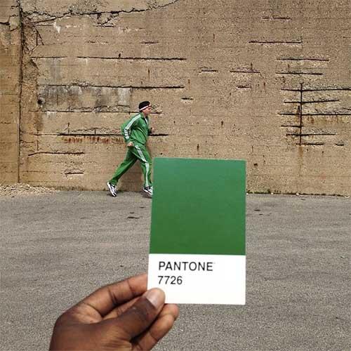 pantoneproject2