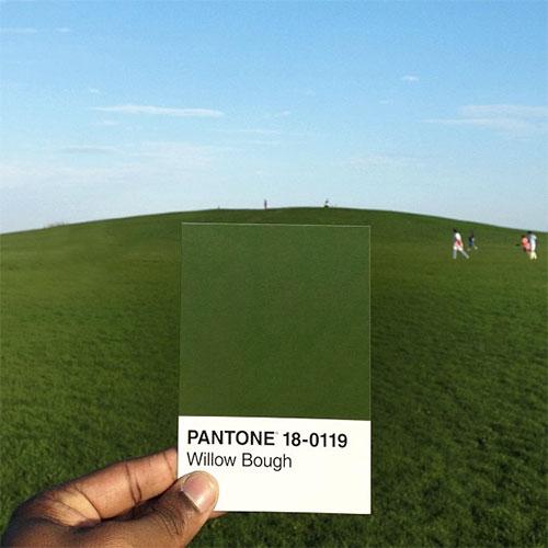 pantoneproject7